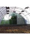 Фермерская теплица 6х40 в Украине от производителя
