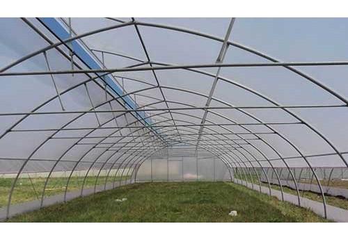 Проветривание в фермерской теплице