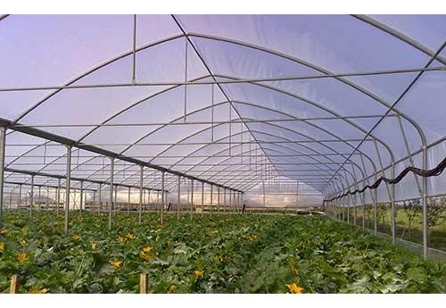 Промышленные теплицы под пленки арочно-тоннельного типа и фермерские