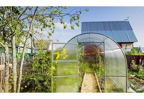 Теплицы из поликарбоната - виды конструкции