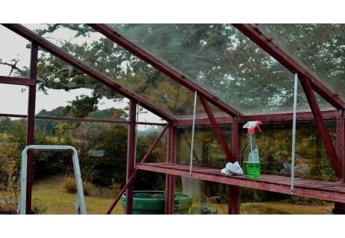 Обработка теплицы от фитофторы осенью