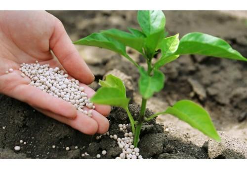 Отличия органических удобрений от минеральных