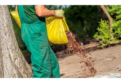 Полезные удобрения для деревьев и кустарников