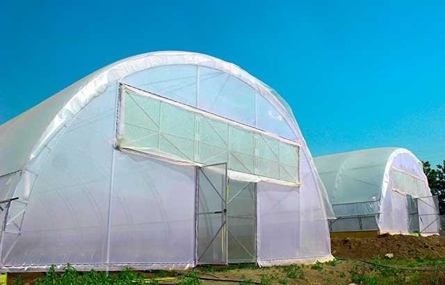 фермерская теплица под двухслойную пленку