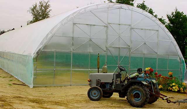 фермерские поликарбонатные теплицы