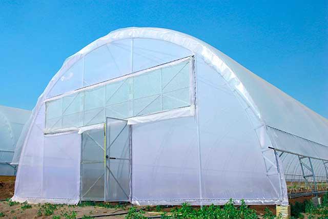фермерские теплицы из поликарбоната арочного типа