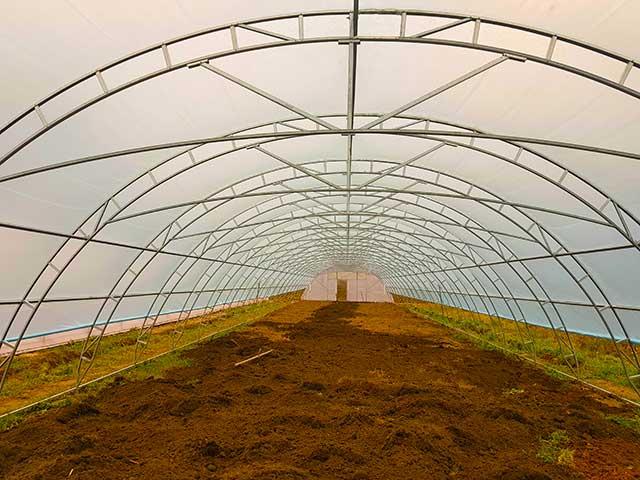 особенности фермерской теплицы из поликарбоната