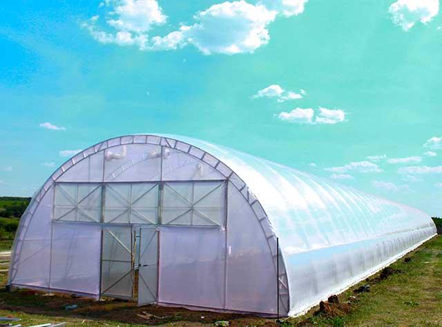 фермерские теплицы для бизнеса