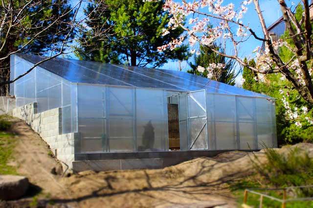 теплица с односкатной крышей из поликарбоната