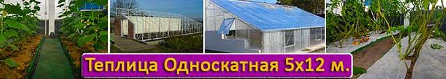 теплица с односкатной крышей 5х12