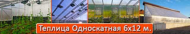теплица с односкатной крышей 6х12