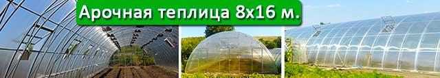теплица под поликарбонат 8х16