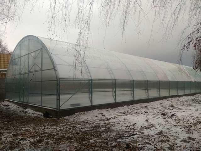 фермерские теплицы под сотовый поликарбонат