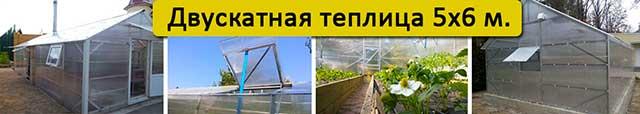 теплица с двускатной крышей 5х6