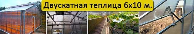 теплица с двускатной крышей 6х10
