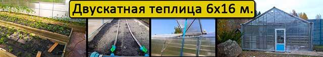 теплицы с двускатной крышей 6х16 в Киеве