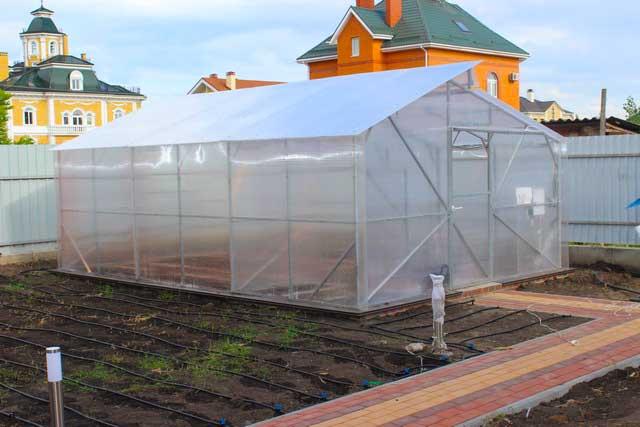 теплица с двускатной крышей шириной 5м для дачи и дома