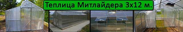теплица Митлайдера 3х12