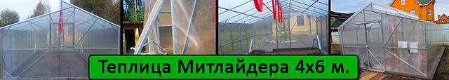 теплица Митлайдера 4х6