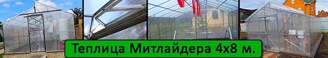 теплица Митлайдера 4х8