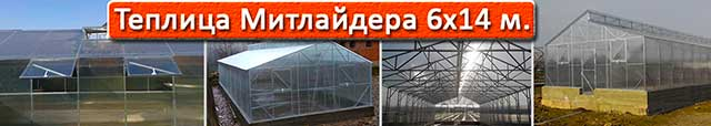 теплица Митлайдера 6х14 в Киеве