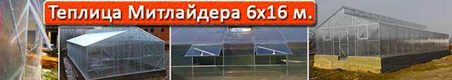 теплица Митлайдера 6х16 в Киеве