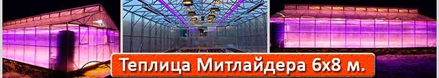 теплица Митлайдера 6х8