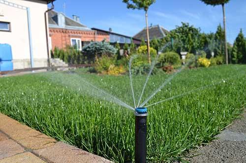 Как экономить воду для полива
