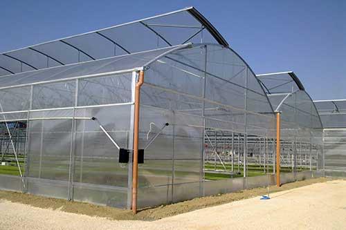 Популярность сотового поликарбоната для теплиц