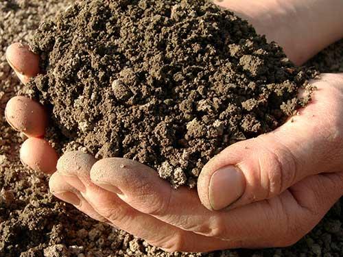 Выполненные требования к почве в теплице