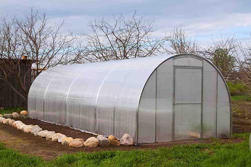 Нужна ли теплица огороднику