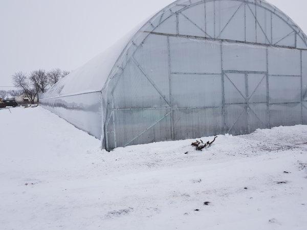 зимняя теплица от «Теплица Маркет» в Николаеве