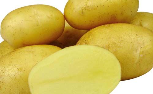 Описание картофеля сорта Джелли и его особенности