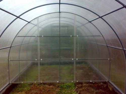Оптимальный температурный режим в теплице для выращивания культур