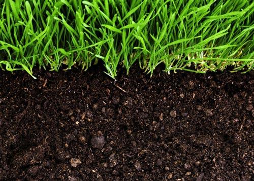 От чего зависит плодородие грунта
