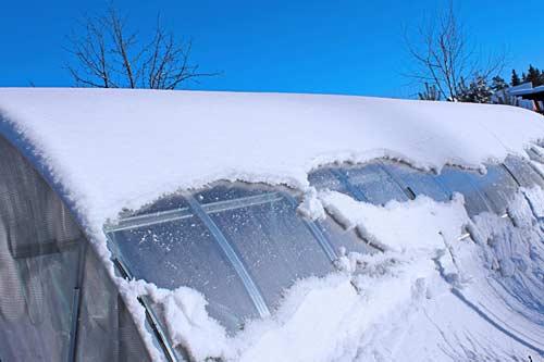 Основные этапы ухода за поликарбонатной теплицей зимой