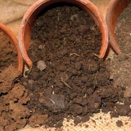 Существующие виды почвы